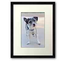 kirby 20 Framed Print