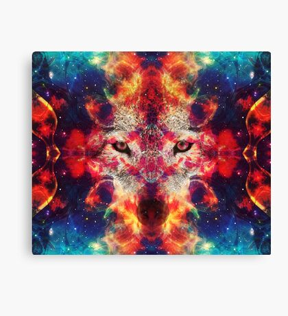 Shaman Of The North 2 Canvas Print