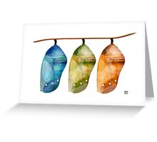 Chrysalis Rainbow Greeting Card