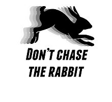 Don't chase the rabbit. by sansasparks