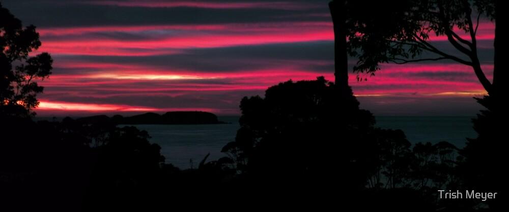 Dynamic Dawn by Trish Meyer