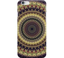 Mandala 27 iPhone Case/Skin