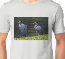A Perfect Pair Unisex T-Shirt