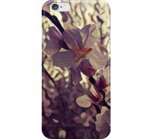 Cherry blossom solitude iPhone Case/Skin