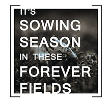 Sowing Season Photographic Print