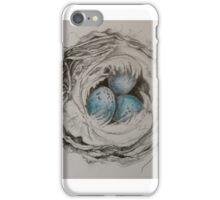 Blue egg nest  iPhone Case/Skin