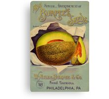 Vintage 1893 Burpee Seeds advertisement melrose melons  Canvas Print
