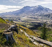 Mt. St. Helens by TomGreenPhotos