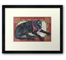 Ted on Red, Black Lab Framed Print