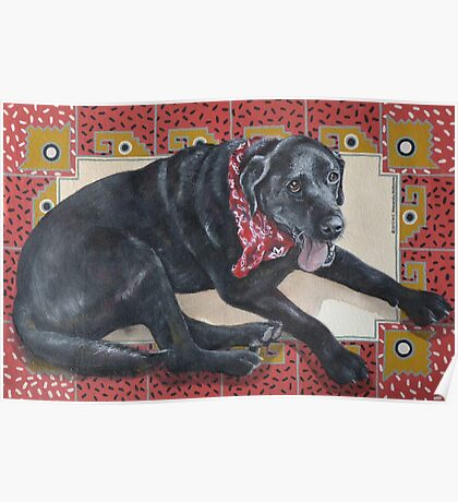 Ted on Red, Black Lab Poster