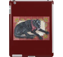 Ted on Red, Black Lab iPad Case/Skin