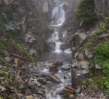 Foggy Waterfall by TomGreenPhotos