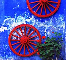 Geranium and red wheels on the blue wall by Alessandro Pinto