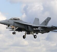 F/A-18 Super Hornet by TomGreenPhotos
