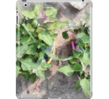 Plants in the home kitchen iPad Case/Skin