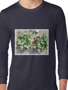 Plants in the home kitchen Long Sleeve T-Shirt