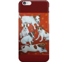 Jack Russells 2 iPhone Case/Skin