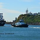 LILY  FORTUNE - BULK  CARRIER by Phil Woodman