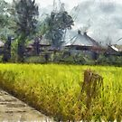 Cottages next to a field by ashishagarwal74