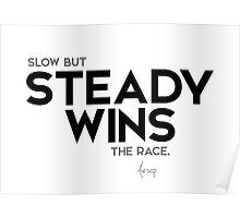 slow but steady wins the race - aesop Poster