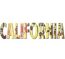 California by SmashDesigns