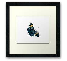 Butterfly on White/Transparent Framed Print