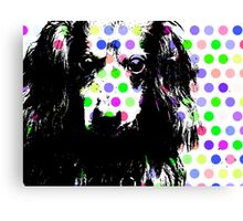 RAIK, Dackel in Farbe, dog with bubbles Canvas Print
