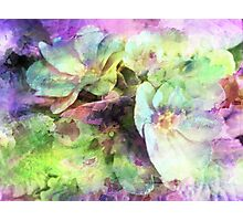 Pink and Green Floral Abstract Photographic Print