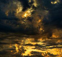 IMG-3044 by Carolyn  Fletcher