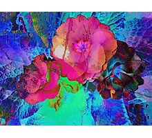 Red and Blue Floral Abstract Photographic Print