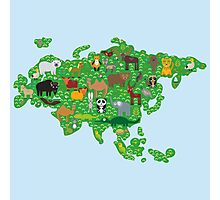 Eurasia Animal Map Green Photographic Print
