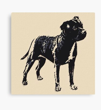 Staffordshire Bull Terrier - Conte Style Canvas Print