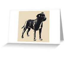 Staffordshire Bull Terrier - Conte Style Greeting Card