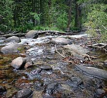 Where The Creek Flows by CarolM
