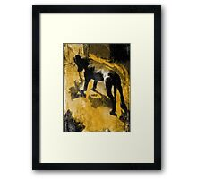 The Dog Toy Framed Print