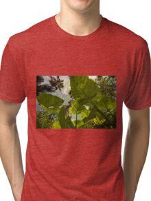 Elephant Ear HDR Tri-blend T-Shirt