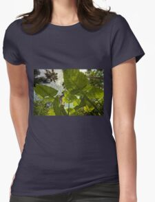 Elephant Ear HDR Womens Fitted T-Shirt