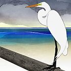 American Great Egret by Janet Carlson