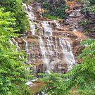Hector Falls Cascade by Kenneth Keifer