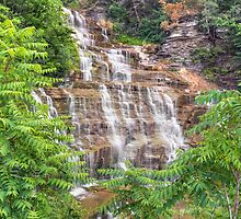 Hector Falls Cascade by Kenneth Keifer