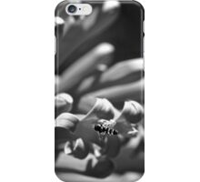 Hover fly in mono  iPhone Case/Skin