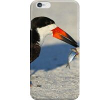 Black Skimmer 3:Successful transfer-Chick now has fish! iPhone Case/Skin