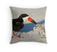 Black Skimmer 3:Successful transfer-Chick now has fish! Throw Pillow