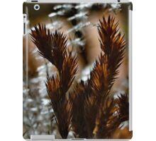 Afternoon Ferns iPad Case/Skin