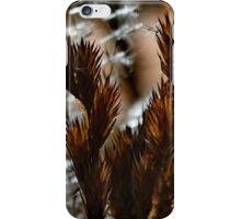 Afternoon Ferns iPhone Case/Skin