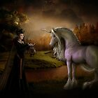 Lady and the Unicorn by Shanina Conway