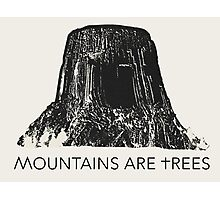 MOUNTAINS ARE TREES Photographic Print