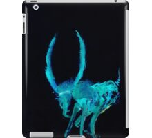 WDV - 694 - You Sure Question Mark iPad Case/Skin