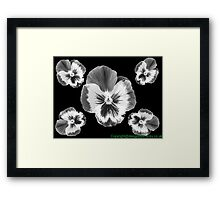 cinq fleur Framed Print