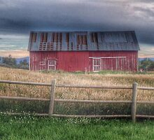 The Barn At Columbine Open Space by Marijane  Moyer